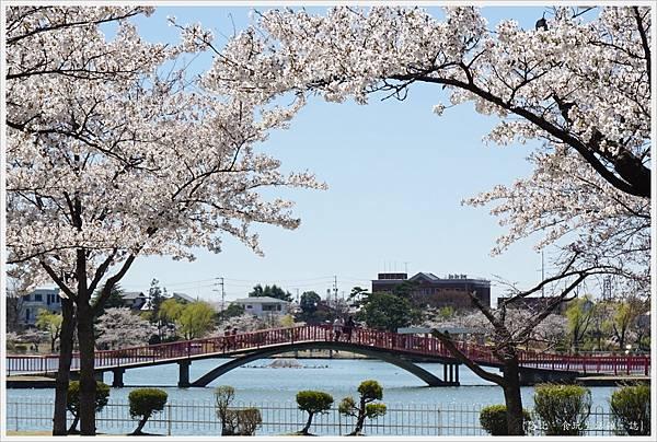 開成山公園-48.JPG