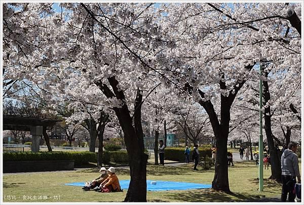 開成山公園-49.JPG
