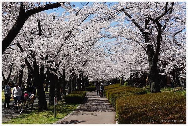 開成山公園-47.JPG
