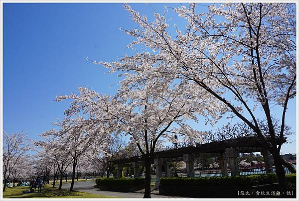 開成山公園-53.JPG