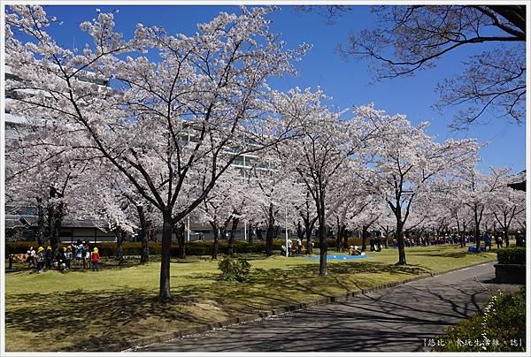開成山公園-55.JPG