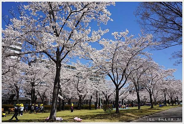 開成山公園-57.JPG