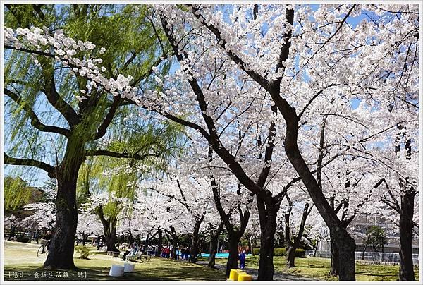 開成山公園-59.JPG