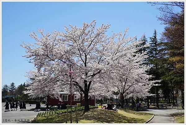 開成山公園-67.JPG