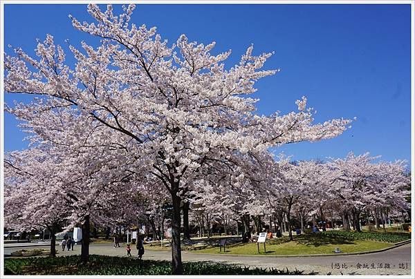 開成山公園-72.JPG