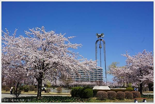 開成山公園-78.JPG