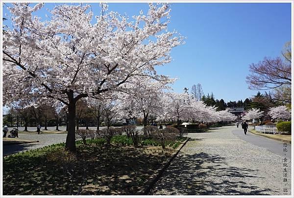 開成山公園-82.JPG