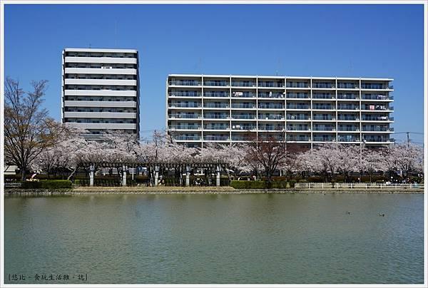 開成山公園-84.JPG