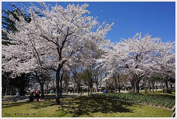 開成山公園-87.JPG
