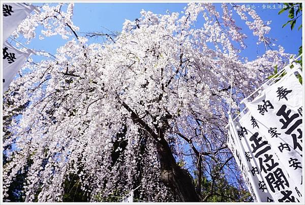 開成山公園-99.JPG