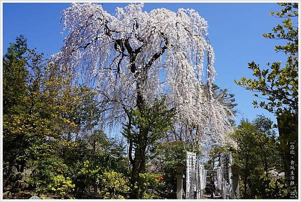開成山公園-101.JPG