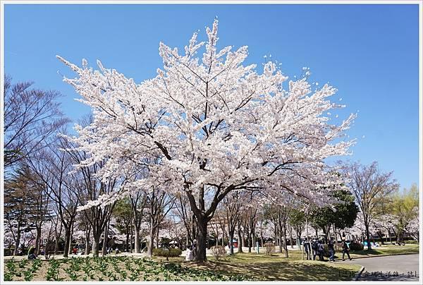 開成山公園-117.JPG