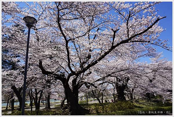 開成山公園-132.JPG