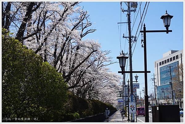 開成山公園-136.JPG