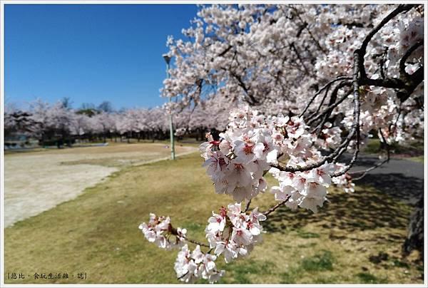 開成山公園-138.jpg