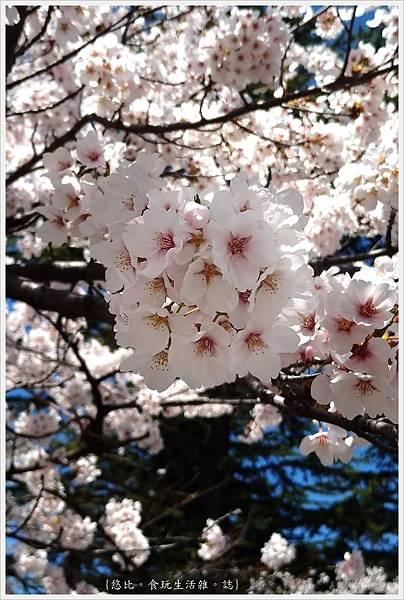 開成山公園-145.jpg