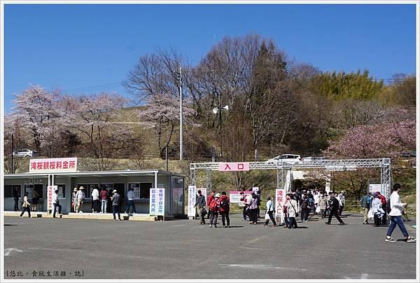三春瀧櫻-1.JPG