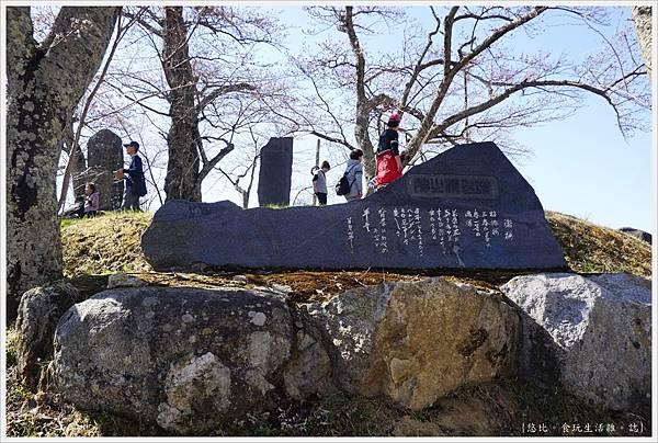 三春瀧櫻-52.JPG