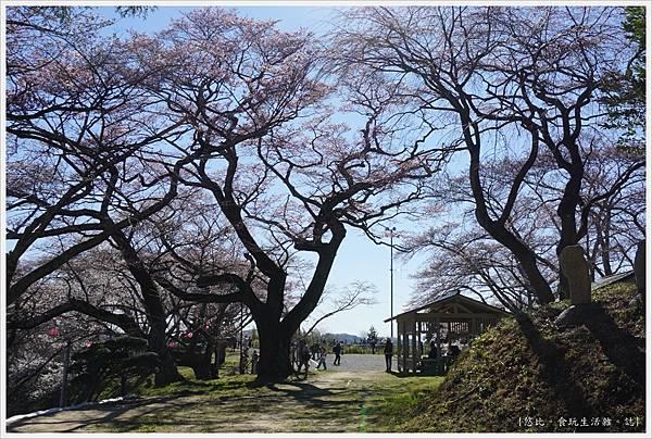 三春瀧櫻-58.JPG