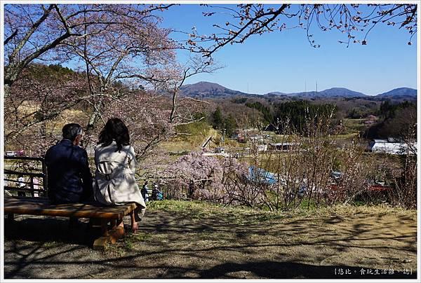 三春瀧櫻-71.JPG