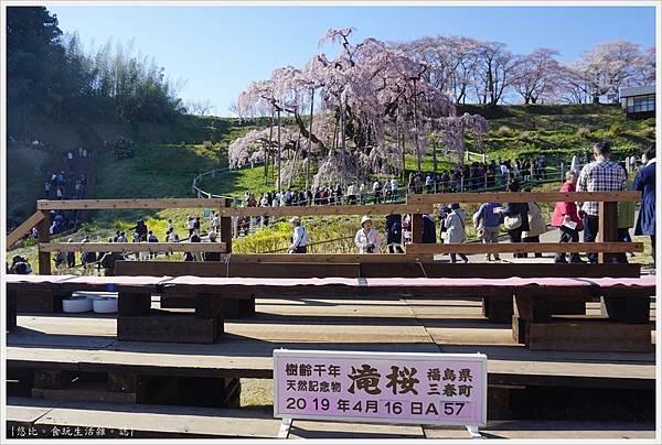 三春瀧櫻-91.JPG