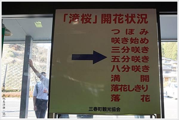 三春瀧櫻-108.JPG