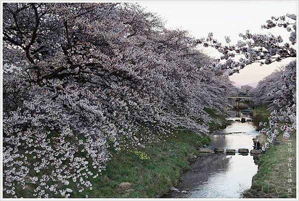 藤田川-5.JPG