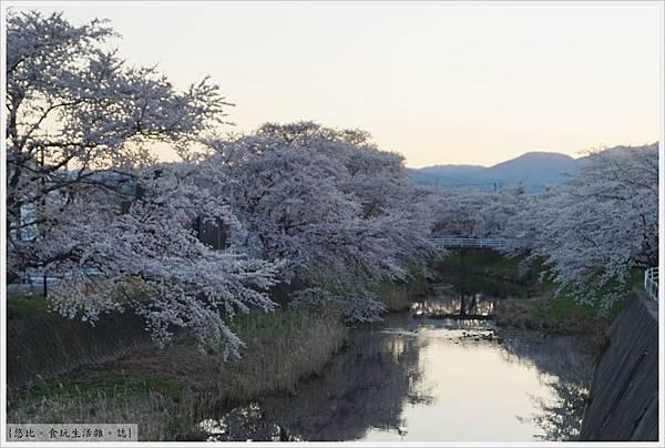 藤田川-2.JPG