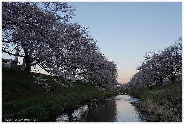 藤田川-16.JPG