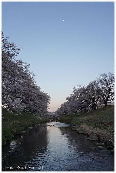 藤田川-20.JPG