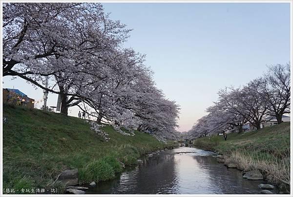藤田川-19.JPG