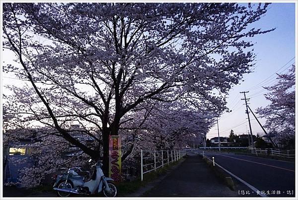 藤田川-47.JPG