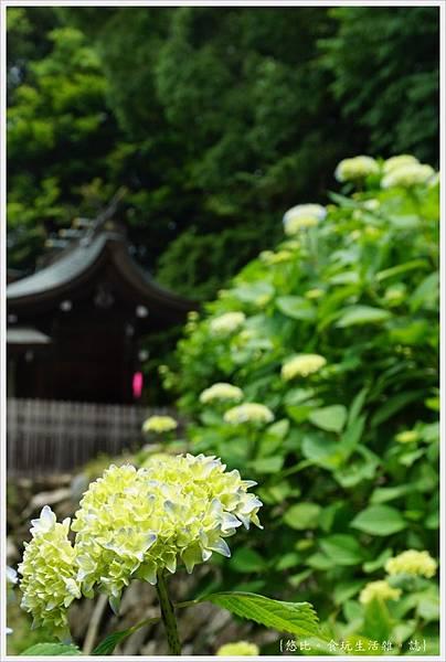吉備津神社-67.JPG