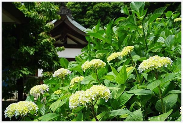 吉備津神社-69.JPG