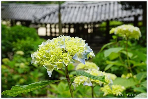 吉備津神社-71.JPG