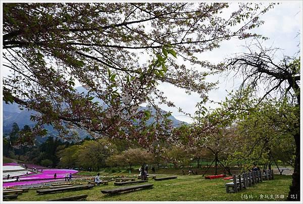 羊山公園-60.JPG