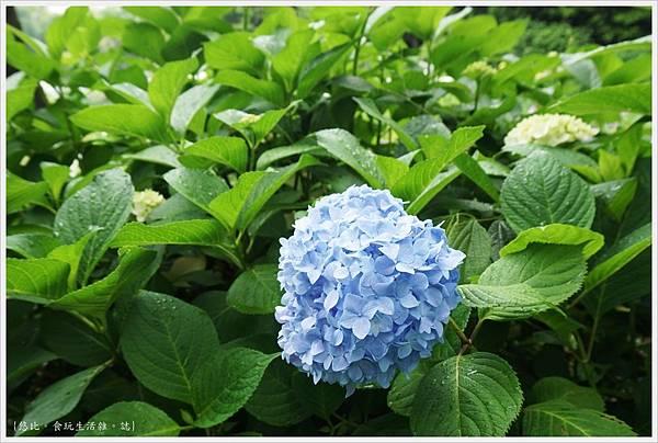 城北花園-6.JPG