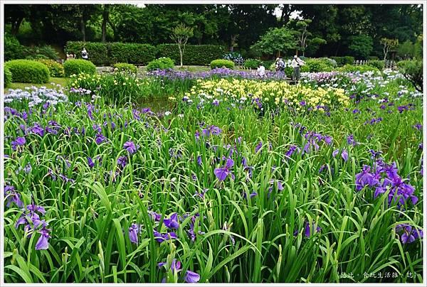 城北花園-7.JPG
