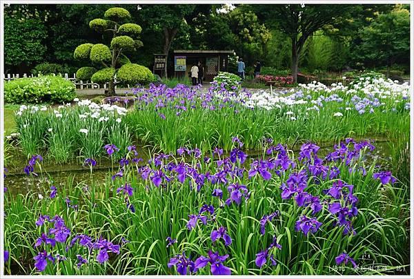 城北花園-29.JPG