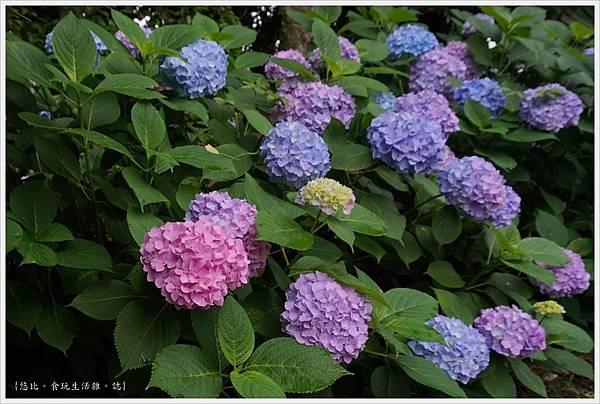 城北花園-77.JPG