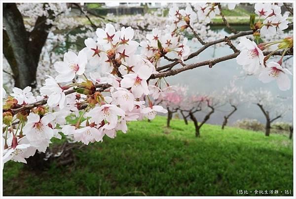 鶴城公園-45.jpg
