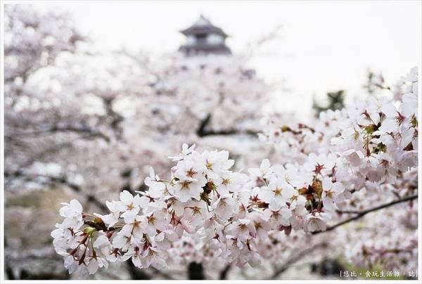 鶴城公園-51.JPG