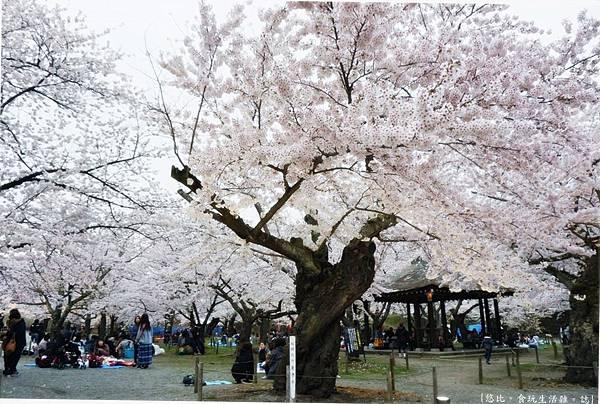 鶴城公園-65.JPG