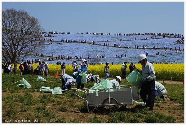 國營日立海濱公園-40.JPG