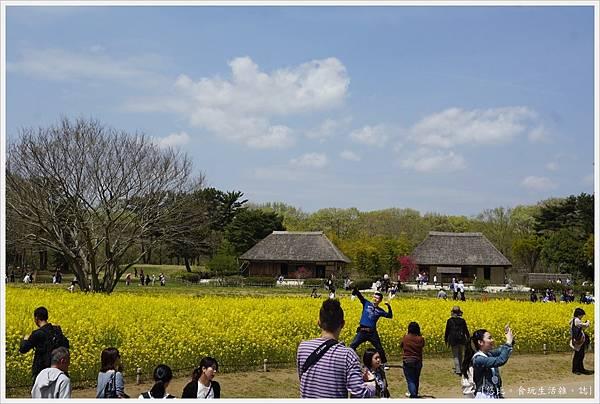 國營日立海濱公園-58.JPG