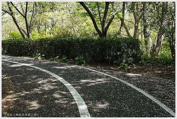 國營日立海濱公園-69.JPG