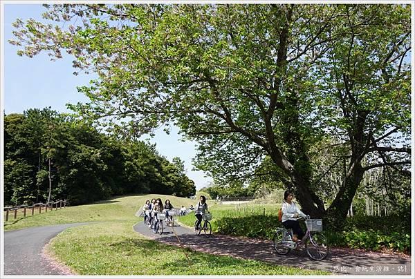 國營日立海濱公園-71.JPG