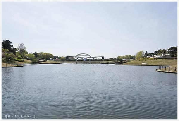 國營日立海濱公園-74.JPG