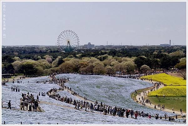 國營日立海濱公園-85.jpg