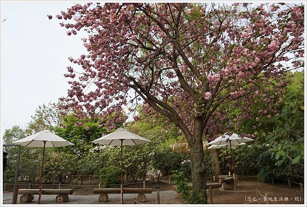 足利花卉公園-64.JPG